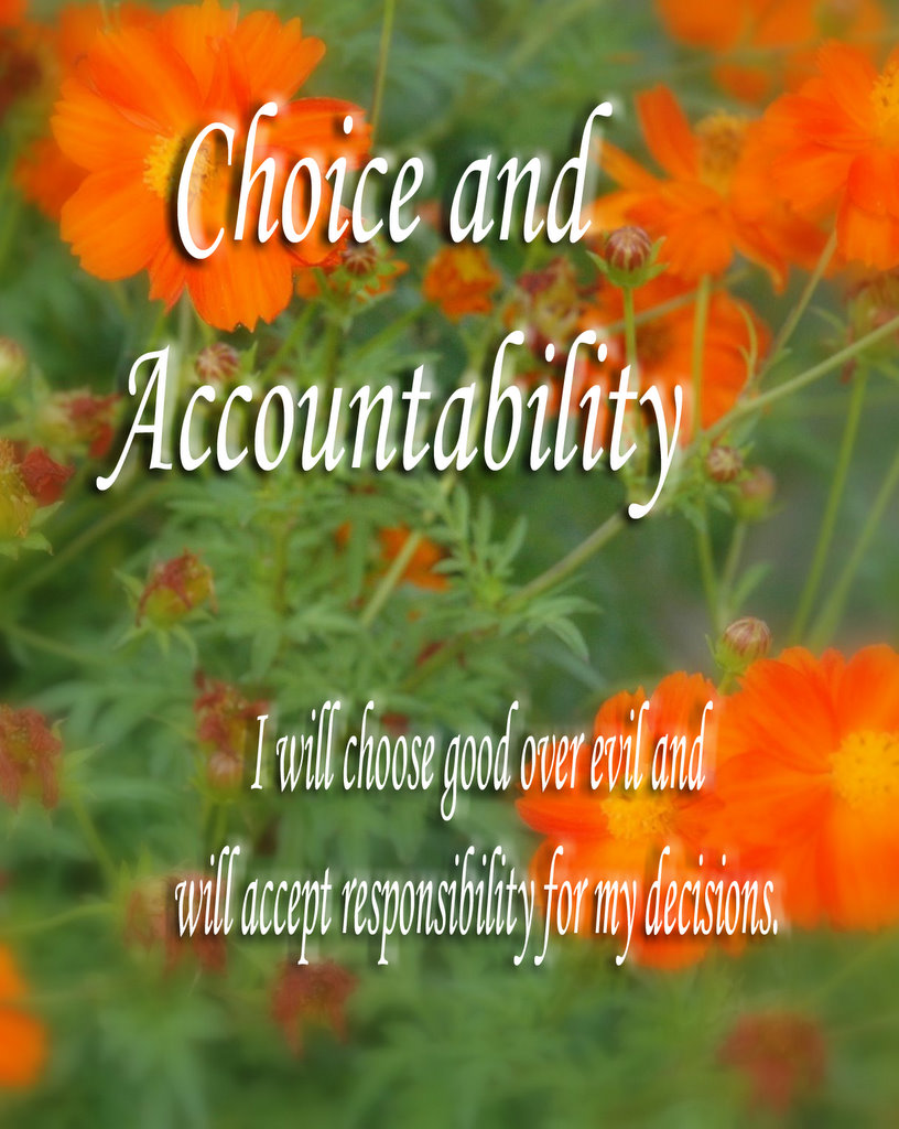open Choice and Accountability Accountability And Integrity Quotes